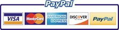 Payment of plagiarism check by PayPal